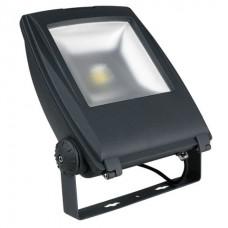 Showtec 50w LED Floodlight