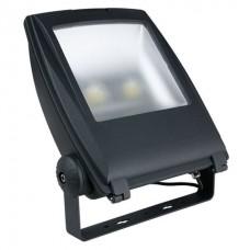 Showtec 100w LED Floodlight