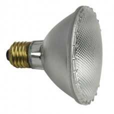 Showtec Par 30 E27 Spot Lamp